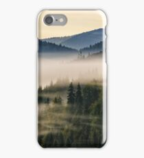 spruce forest on a hill side in fog iPhone Case/Skin