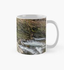 forest river with stones and moss Mug