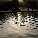 Palace of Legion of Honor - Afternoon by jookboy