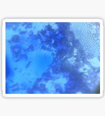 Mysteries of bubbles Sticker