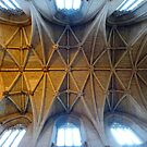 Vaulted Roof of Malmesbury Abbey by trish725