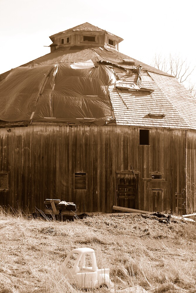 Round Barn by BarbHoffman
