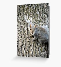 Hi! Can I help you? Greeting Card