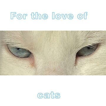For the love of cats by michelleduerden
