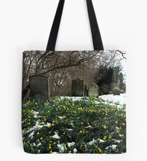 St, mary's church , church houses, Farndale  today 07/04/08 Tote Bag