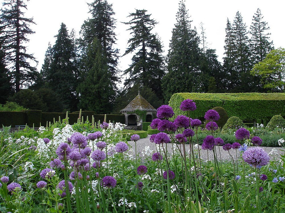 scone palace 1 by flower7027