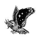 «Night owl» de Celeste Ciafarone