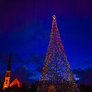 Christmas in Charleston by Wendy Mogul