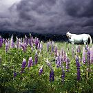White Horse in a Lupine Storm by Wayne King