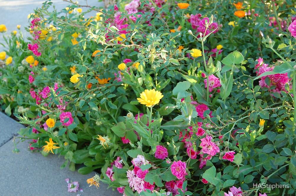 floral bundle by HAStephens