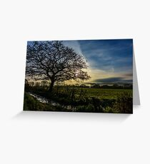 Morning Light in the Towy Valley, Wales Greeting Card