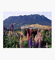 photoj Tasmania Mt Roland Photographic Print