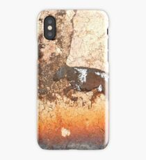 Horse Play iPhone Case