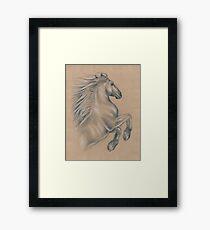 Powerful Equine Framed Print