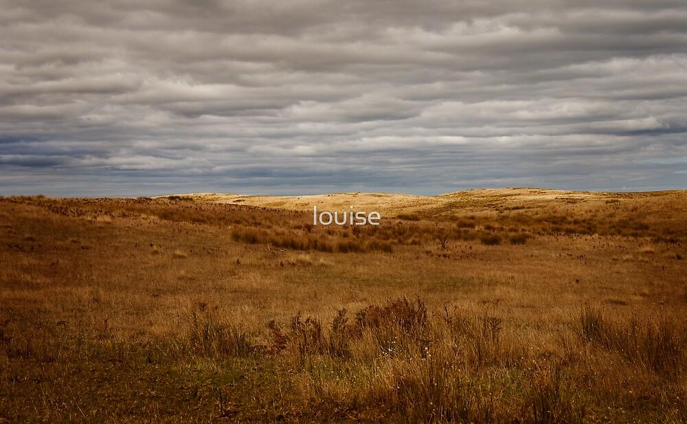 fields by louise