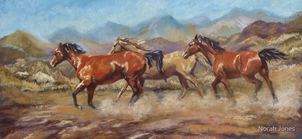 Free as the wind by Norah Jones