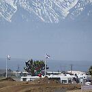 Loretta Lynn Qualifier SW Area Competitive Edge Hesperia, CA #117 Paluzzi  by leih2008