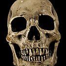 Bones by Drummy