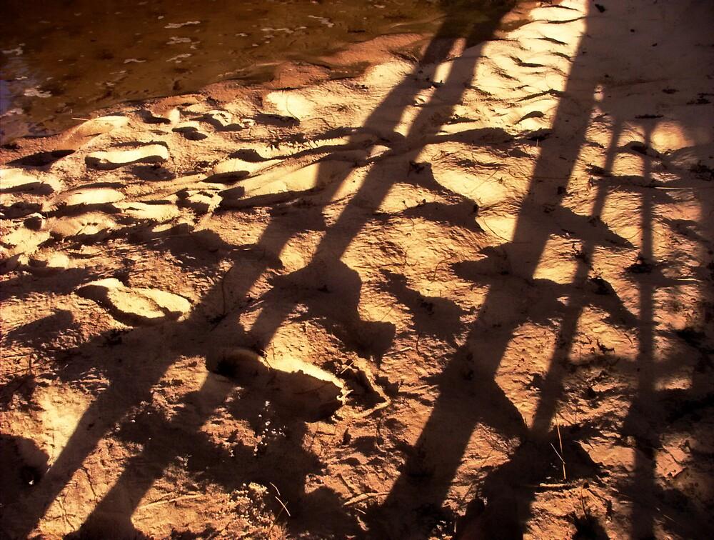 Sand at sunset by Sadandal