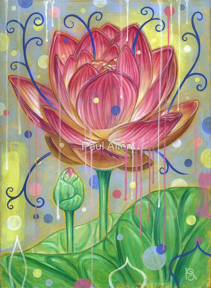 Lotus by Paul Allen