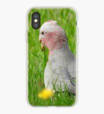 Galah iPhone Case