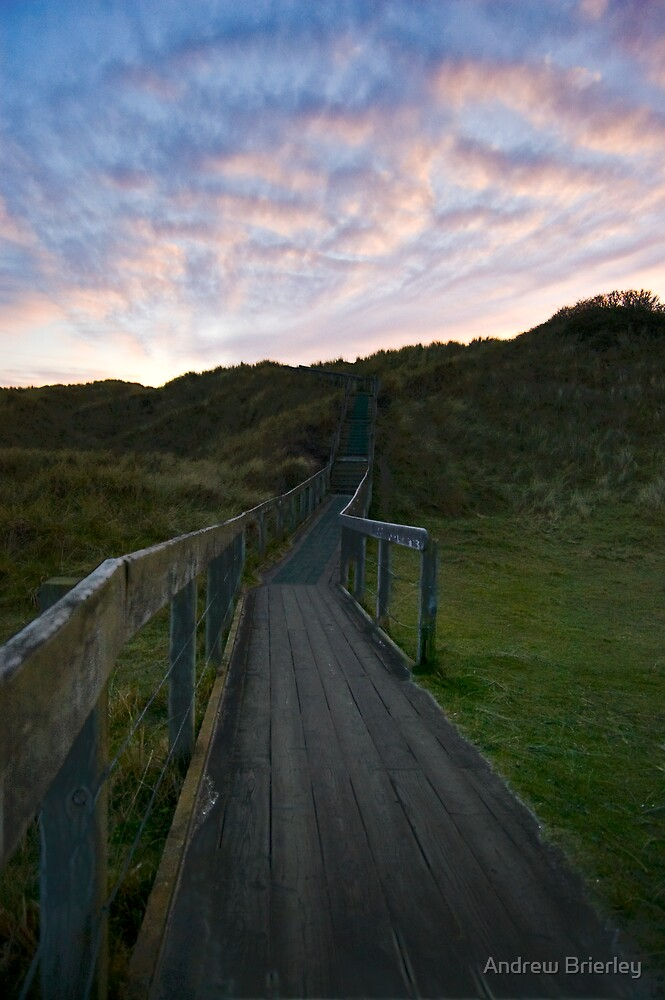 Over the Boardwalk by Andrew Brierley