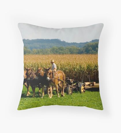 Amish Country © Throw Pillow