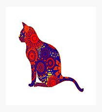 Cat Fancy Photographic Print