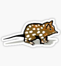 Quoll Sticker