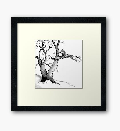 The Branch Improves the View Framed Print