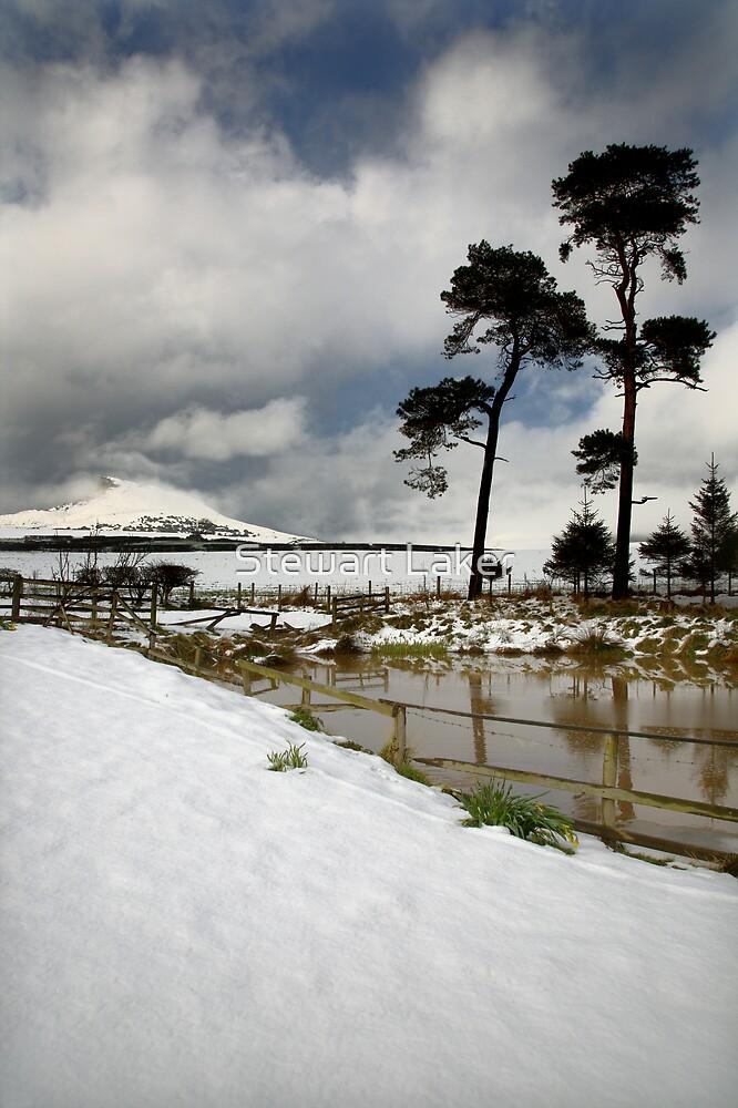 Aireyholme Pond by Stewart Laker