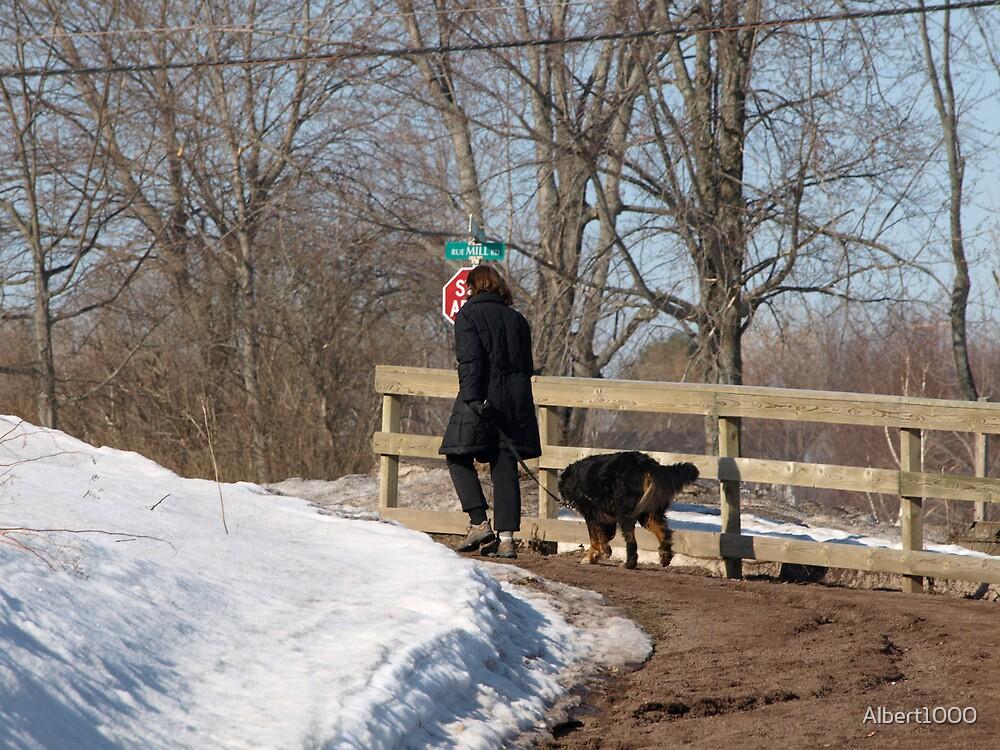 NC walking the dog #2 by Albert1000