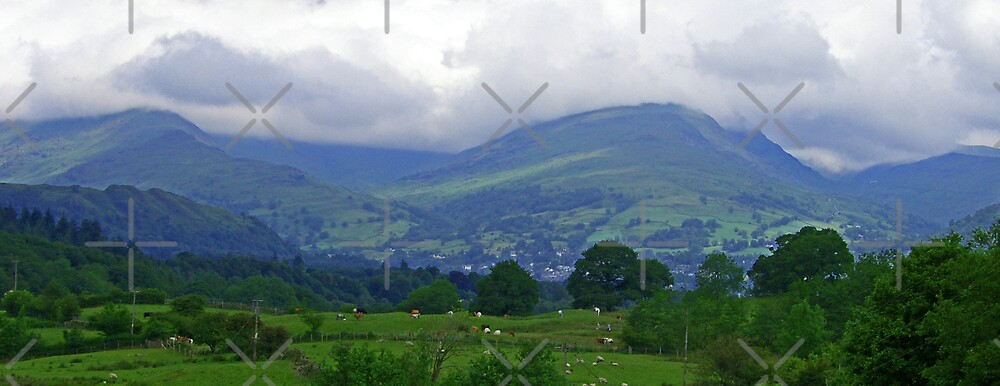 Lake District by Tom Gomez