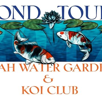 Pond Tour 2017 by corsetti