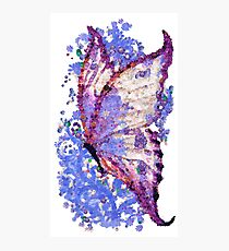 Magic butterfly  - Mariposa mágica Photographic Print