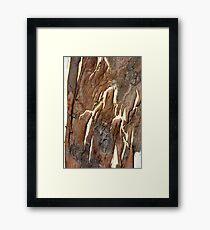 Mocha Cafe Latte Framed Print
