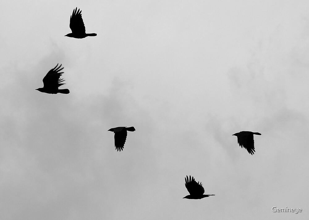 Birds Of A Feather by Gemineye