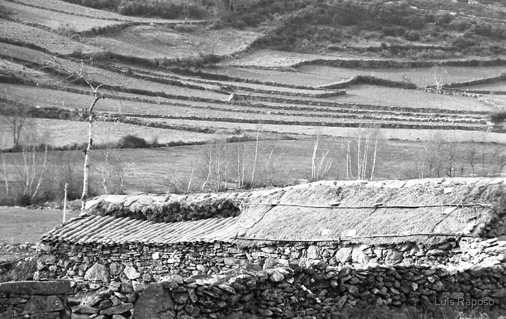 Paisagem rural by Luis Raposo
