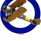 Pacific WW2 RAAF Roundel Avro Cadet VH-AGH Design by muz2142