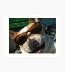 just the cutest frenchie in the whole wide world Art Print