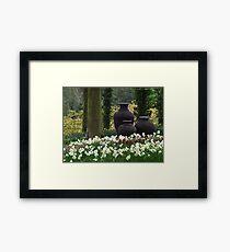 3 Urns ( Landscape ) Framed Print