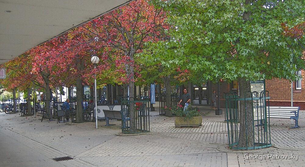 Corbett Plaza Bowral by George Petrovsky