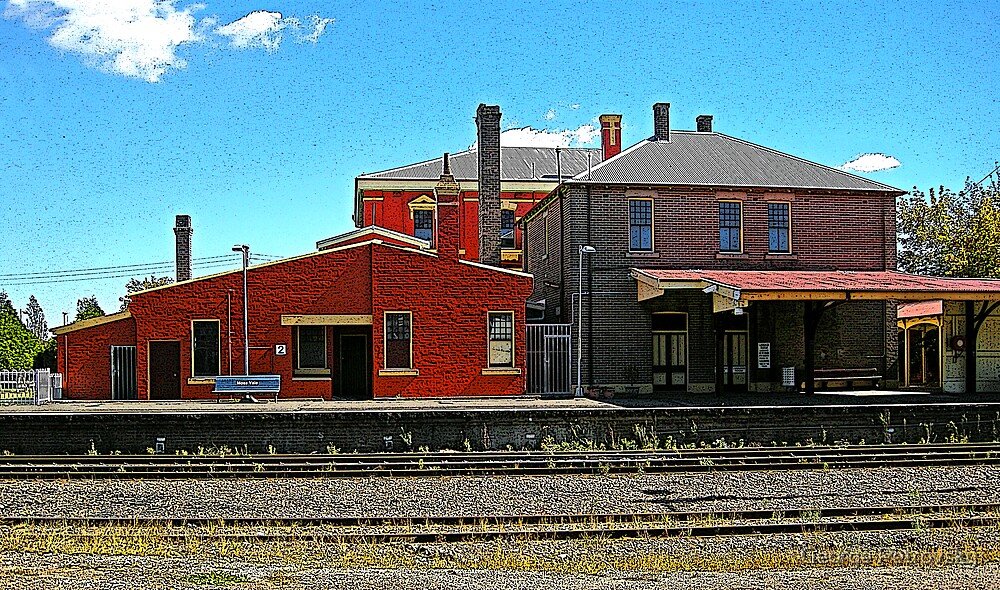 Moss Vale Station by George Petrovsky