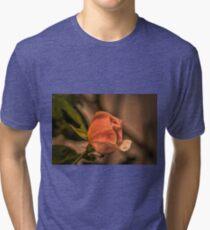 Orange rose summer 2015, Sweden Tri-blend T-Shirt