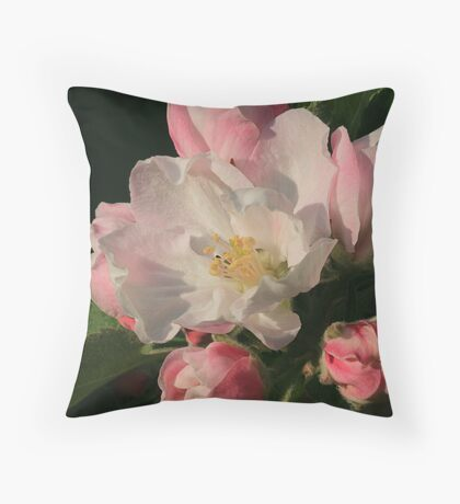 Blossoming Apple Blossom Throw Pillow