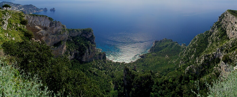 Capri from the Peak by Ashley Ng