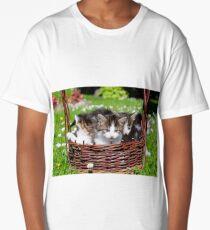 Furry young cats  Long T-Shirt