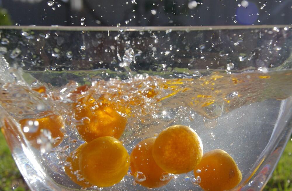 Orange burst by Deidre Cripwell