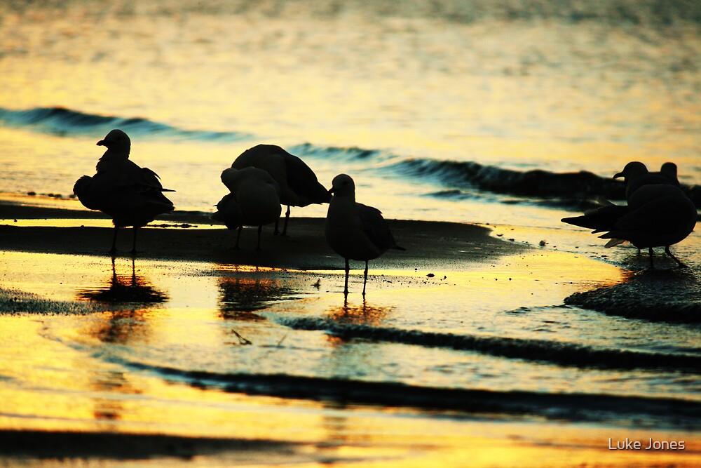 Gullsgold by Luke Jones