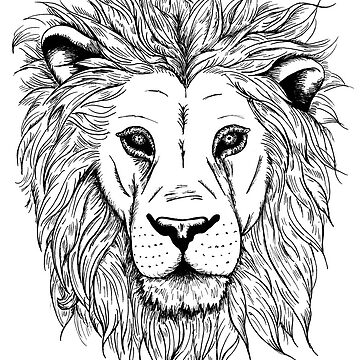 Lion by EmmaBarker